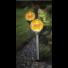 Kép 2/2 - ROMA kerti szolár lámpa szett borostyán