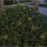 Kép 2/2 - Bassis kerti szolár lámpa