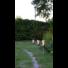 Kép 2/2 - TOULON kerti szolár lámpa fáklya 3db