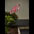 Kép 2/2 - Flamingo kerti szolár lámpa