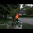 Kép 2/2 - Goja kerti szolár lámpa