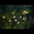 Kép 2/2 - Partaj kerti szolár lámpa