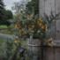 Kép 2/2 - Firework kerti szolár lámpa lánc